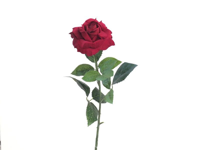 Одиночные розы открытки 42